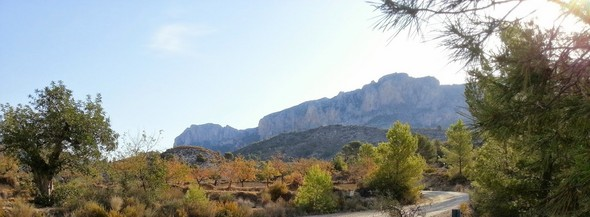 green-pastures-await-your-discovery-in-the-heart-of-the-costa-blanca-el-campello