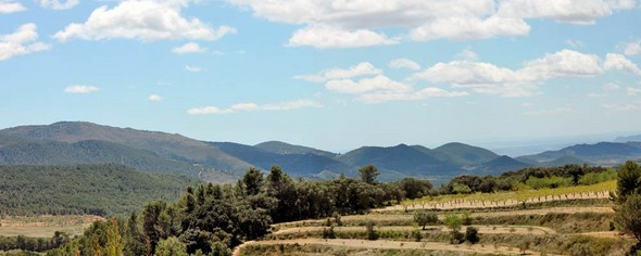 green-pastures-await-your-discovery-in-the-heart-of-the-costa-blanca-el-rentonar