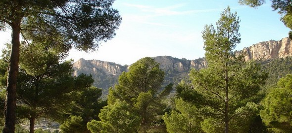 green-pastures-await-your-discovery-in-the-heart-of-the-costa-blanca-xorret-de-cati