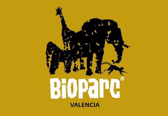 learn-about-the-treasures-hidden-within-the-bioparc-de-valencia
