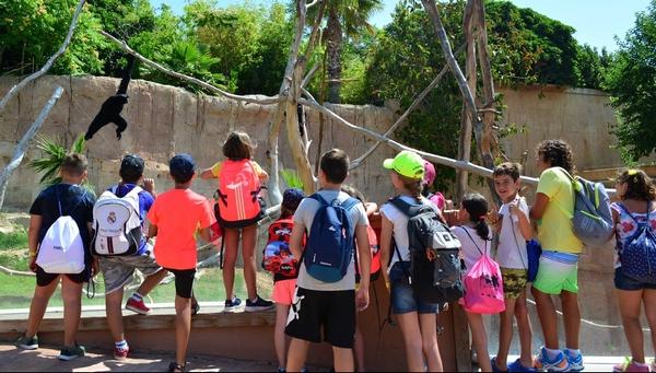 terra-natura-zoo-benidorm-kids