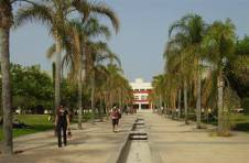 Thumbnail Alicante University gardens